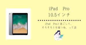 iPad Pro 購入して1年、イラスト・勉強とマルチに使えて優秀過ぎる